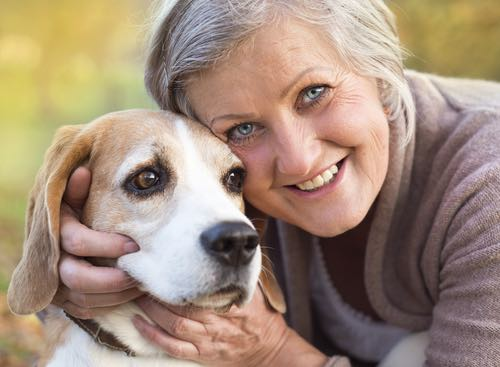 pet therapy for the elderly 1